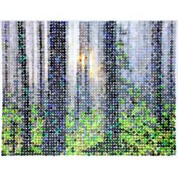 copy of Forêt